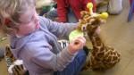 thema dierentuin 2 048