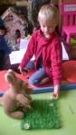 thema dierentuin 2 073