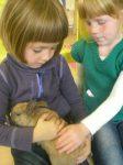thema huisdieren 2012 921