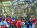 dierentuin 014
