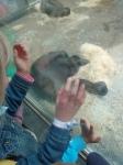 dierentuin 018
