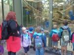 dierentuin 019