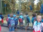 dierentuin 020