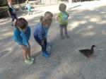 dierentuin 025