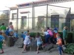 dierentuin 026