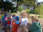 dierentuin 031