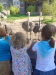 dierentuin 033