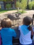dierentuin 034