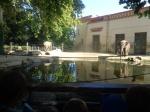 dierentuin 046