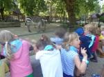 dierentuin 049
