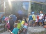 dierentuin 056
