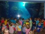 dierentuin 059