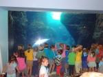 dierentuin 060