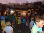 dierentuin 064