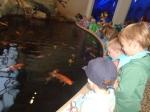dierentuin 070