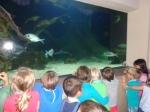 dierentuin 073