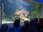 dierentuin 077