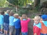 dierentuin 097