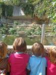 dierentuin 102