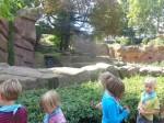 dierentuin 108