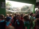 dierentuin 111