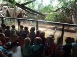 dierentuin 115