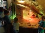 dierentuin 118