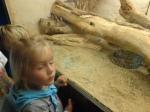 dierentuin 122