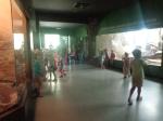 dierentuin 124