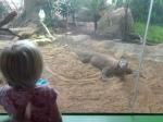 dierentuin 126