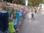 dierentuin 139