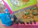 thema dierentuin 034